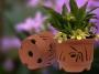 "Doniczki ceramiczne ""OrchidPot"" - Seria Cypripedium"